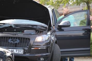 ..auch der Motorraum sieht nicht nach normalem Motor aus....