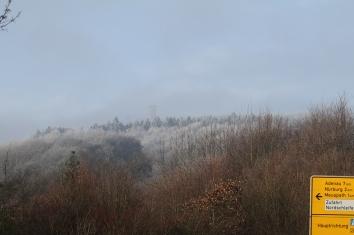 Frost in der Eifel
